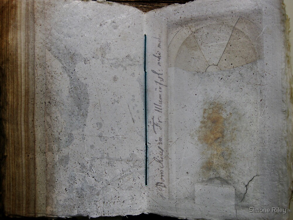 Book of Stone by Simone Riley