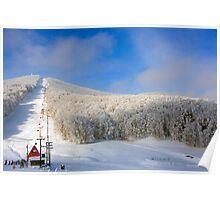 snow center Poster