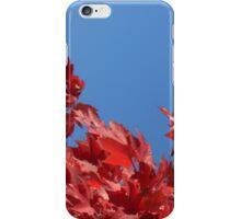 Autumn Sky iPhone Case/Skin