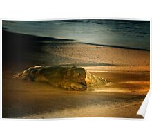 Moonstone Beach Rock at Sunrise Poster