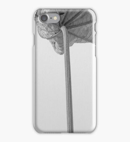 leafscape #24 iPhone Case/Skin