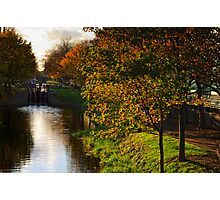 Grand Canal in autumn, Dublin, Ireland Photographic Print