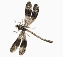 Dragonfly drawing Kids Tee