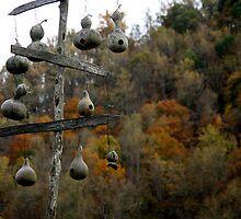 Gourd Houses by Blaze66
