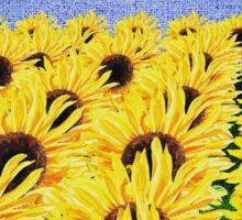 Sunflowers Field Sticker
