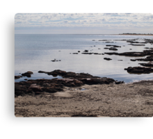 Stromatolites Hamlin Pool ,Shark Bay Western Australia  Canvas Print