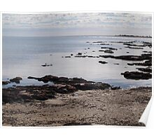 Stromatolites Hamlin Pool ,Shark Bay Western Australia  Poster