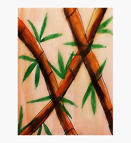 Bamboo,  4th version, watercolor Photographic Print
