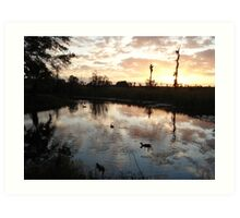 SUNSET WITH MUSCOVIES (ECONFINA CREEK, FL) Art Print