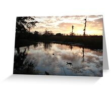 SUNSET WITH MUSCOVIES (ECONFINA CREEK, FL) Greeting Card