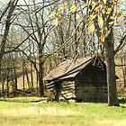 Old Log Shed by Annlynn Ward
