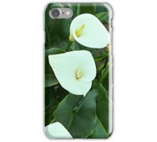 Day Lilies2... iPhone Case/Skin