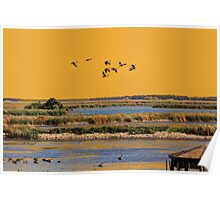 Early Morn on the Marsh Poster