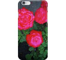 3 Red Roses... iPhone Case/Skin