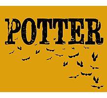 Potter Snitch Photographic Print