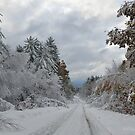 October Snow in New England by smalletphotos