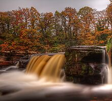 Autumn In Richmond (2) by Mat Robinson