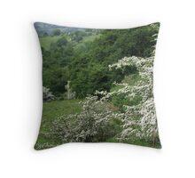 Hawthorn bushes everywhere Throw Pillow