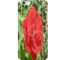 RedRose... iPhone Case/Skin