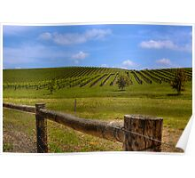 Nepenthe Vineyards - Hahndorf - Balhannah, The Adelaide Hills, SA Poster