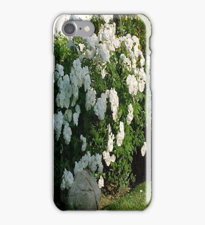 White Tea Roses... iPhone Case/Skin