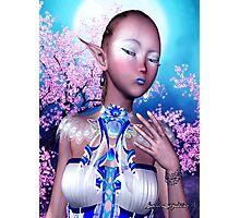 Snow Elf # 1 Photographic Print