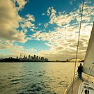 Sailing on Sydney Harbour by Roger Barnes