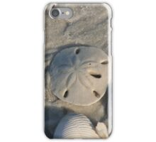Sand Dollar I-Phone Cover iPhone Case/Skin
