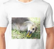 Dandelions are my favourite Unisex T-Shirt