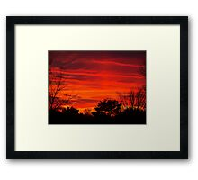 Burning Bushes Framed Print
