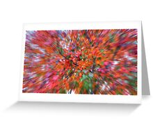 Leaves of the Rainbow  Greeting Card