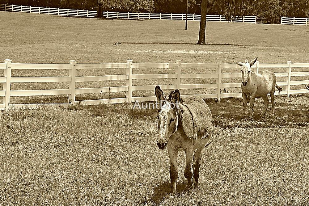 Donkeys in Sepia by AuntDot