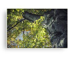 Backlit Leaves Canvas Print