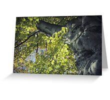 Backlit Leaves Greeting Card