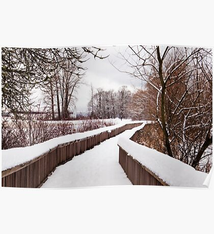 Snow Covered Path Poster