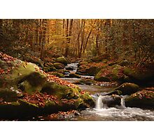 smoky mountain fall Photographic Print