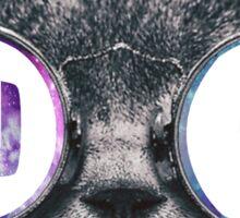 ADPI Cat Galaxy Sticker