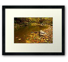 McDowell Creek Landscape Framed Print