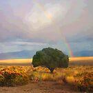 Desert Hope by Arla M. Ruggles