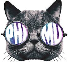 Phi Mu Cat Galaxy by trendysticks