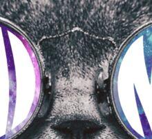Phi Mu Cat Galaxy Sticker