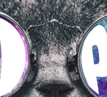 Pi Phi Cat Galaxy Sticker