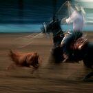 Blurred Roper #2 by Syd Bates
