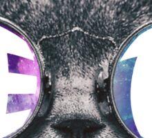 Zeta Cat Galaxy Sticker