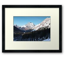 Winter view II Framed Print