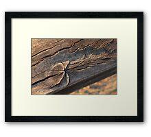 Aged wooden beam Framed Print