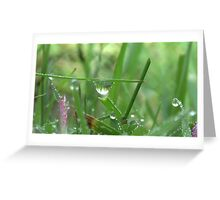 The Perfect Water Drop Greeting Card