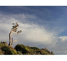 ~Salute the Sun~  Point Lonsdale, Victoria Photographic Print