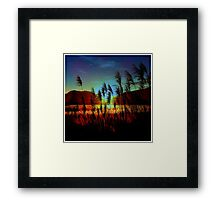 Sugarcane Sunset Framed Print