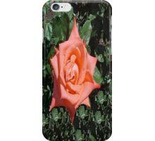 Orange Rose... iPhone Case/Skin